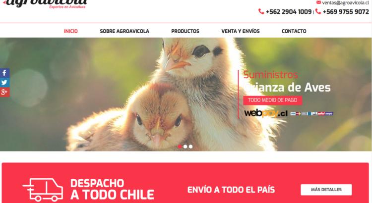 Comedero de gallinas